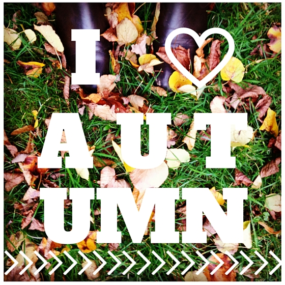 I Love Autumn Yellow Feather Blog