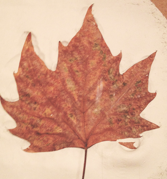 DIY Autumn leaf tea light holder tutorial step 2