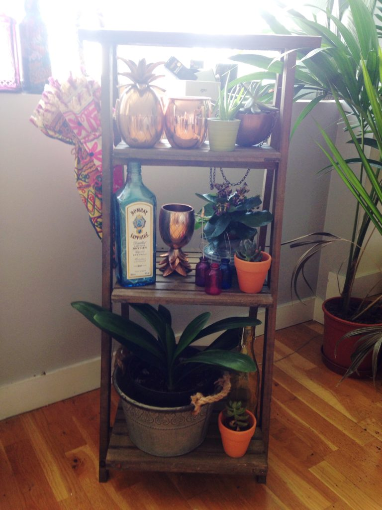 Rustic wooden plant stand with barware