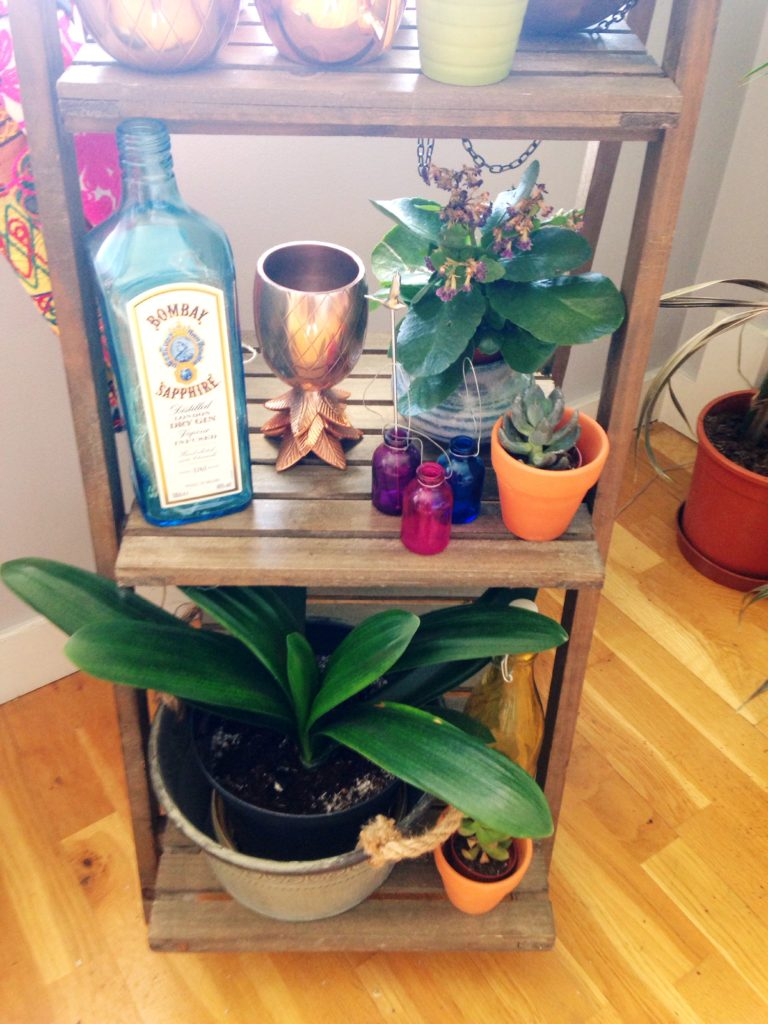 Wooden plant stand with plants and barware