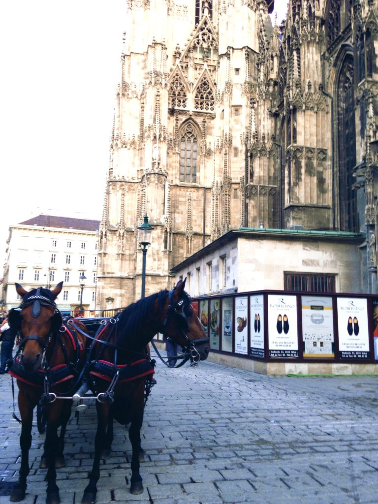 Horse drawn carriages outside St Stephens Vienna