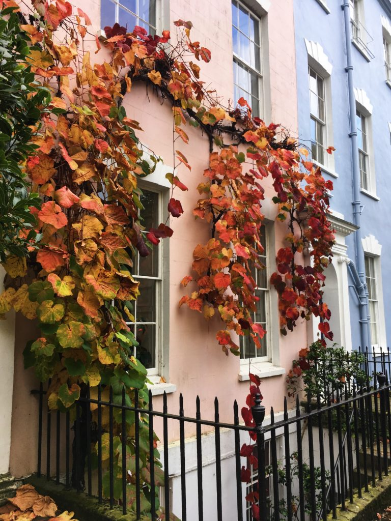 autumn leaves on peach house colourful cliftonwood yellow feather blog