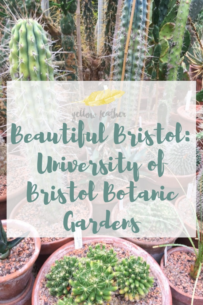 Beautiful Bristol University of Bristol Botanic Gardens