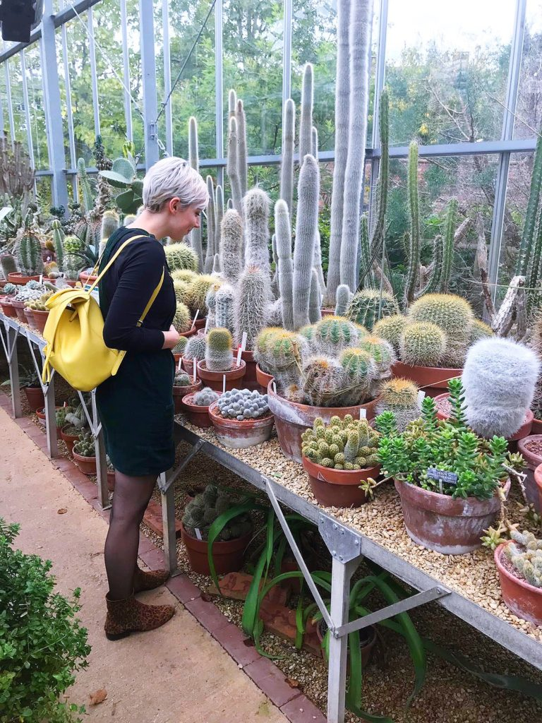 sarah walker exploring cacti greenhouses bristol botanic gardens yellow feather blog
