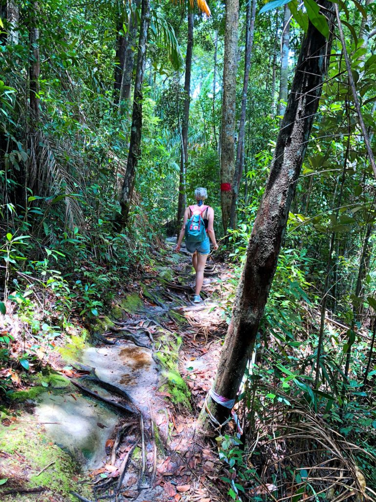 trekking bato national park borneo solo female travel fears yellow feather blog