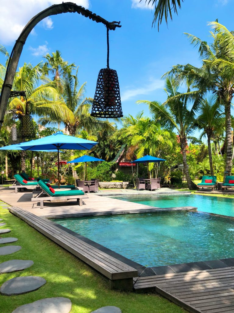 beautiful desa seni pool canguu bali