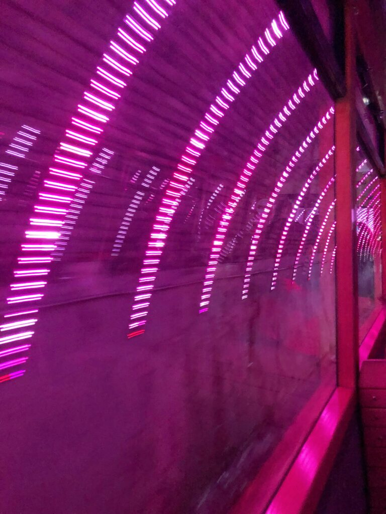 pink lights in tunnel wellington cable car