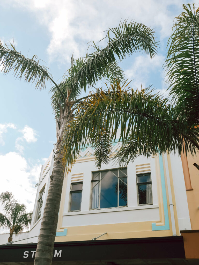 art deco mint and yellow building facade napier new zealand palm tree foreground
